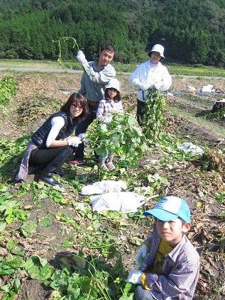 収穫3.jpg