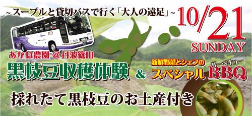 黒枝豆収穫体験&BBQ