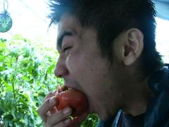 あかね農園 山トマト食べる.JPG