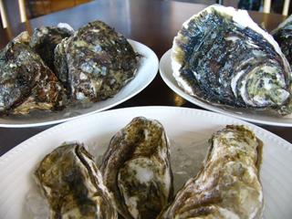 日本の牡蠣3種.JPG